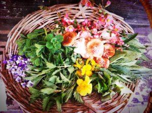 herbal retreat