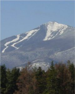 whiteface1